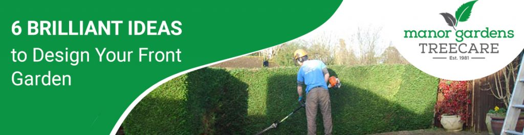 tree care in Bromley